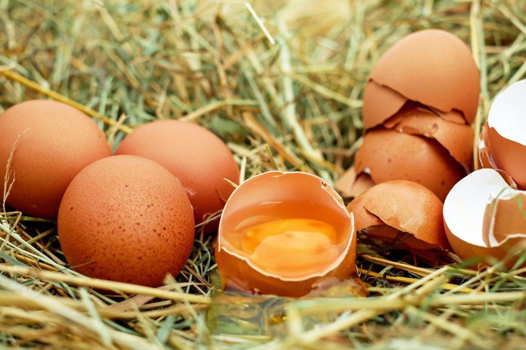 uova sopra paglia con uovo centrale aperto - uova dreidatate